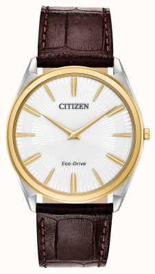Citizen Стилет | мужской экологический драйв | коричневый кожаный ремешок | белый циферблат AR3074-03A